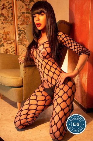 TS British Nicole is a super sexy British Escort in Dundee