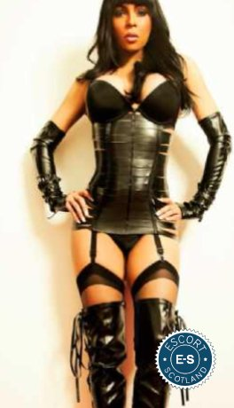 TS British Nicole is a top quality British Escort in Dundee