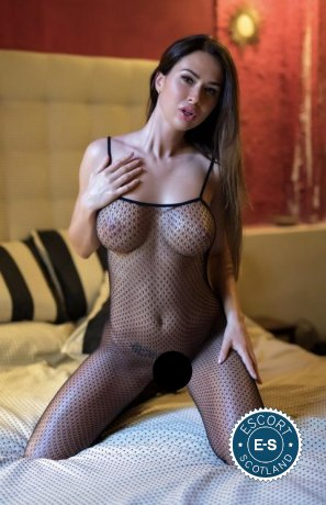 Book a meeting with Safaya in Glasgow City Centre today
