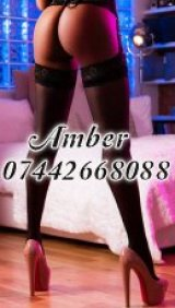 Amber - escort in Edinburgh